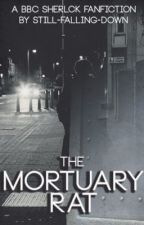 the mortuary rat by Still-falling-down
