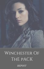 Winchester Of The Pack - Repost by insaneredhead