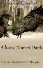 A Horse named Dante by JustWantToScream
