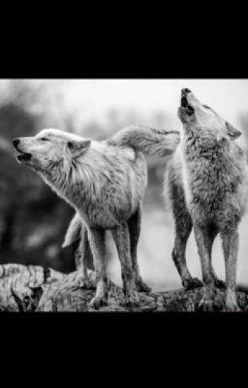 Double Trouble (LesbianStories/Werewolf)