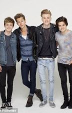 100 Facts About The Vamps by boybandfacts