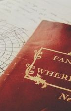 Unexpected   A Fantastic Beasts Fanfiction by MiaTheHooman