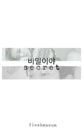 비밀이야 (Secret) by fleshmaeum