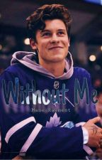 Without Me [Shawn Mendes] by Mane_Rayment
