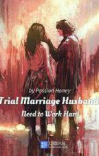 Trial Marriage Husband: Need To Work Hard(Vol.1) by KimAngel1995