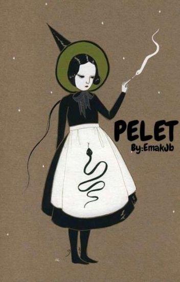 #Pelet(Revisi Pelan Pelan Ya.... Cuman 1 Part😂)