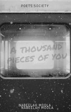 A thousand pieces of you  by Nabeelah15
