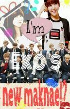 I'm Exo's new maknae!? by Park_BinChan