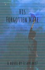 His Forgotten Mate. by fishycake7