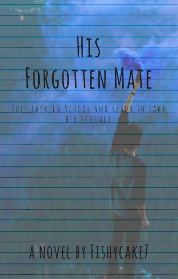 His Forgotten Mate.
