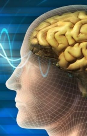 Work related Brain injury Claims by kellymccormack