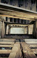 Building Your Ark (Faith) by christyjacobs5