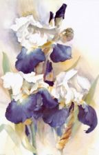 Tặng người một bó hoa Diên Vĩ! - Đường Thất Công Tử by pikeman1