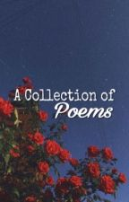 A Collection of Poems  by PhoenixFlare4489