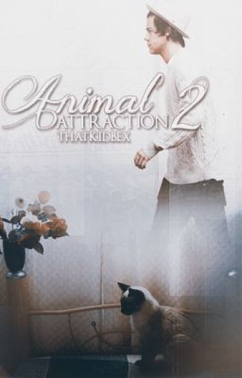 Animal Attraction 2