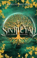 Sin'Meyah, T.2 : En terre étrangère by RomaneBrv