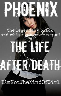 the life after death pltbawg book two jul 08 2012 book two of phoenix