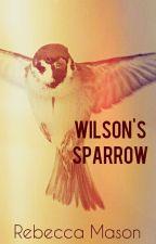 Wilson's Sparrow by Human_Mermaid