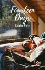 Fourteen Days by katelynmwhite_