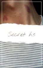 Secret h.s  by _laur_a