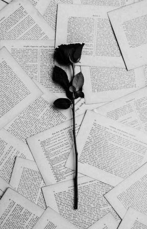 Black Roses • yoonseok • namjin  by pieprzojad