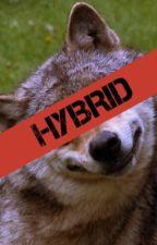 HYBRID(EDITING) by gigiaddesso