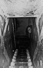 The Cellar by IslandGirl6701