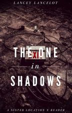 The One In Shadows - Sister Location x Reader by Lancey_Lancelot