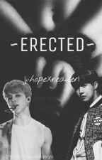 ~ERECTED~ |jihopeXreader| ff | 21++++ | by BangTanSuckmyass