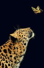 Beast (an african Werewolf Story) by Wongile