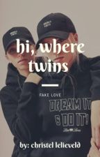 Hi, where twins. //Fake love by christellelieveld