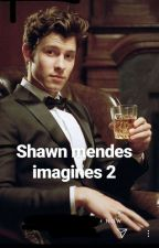 shawn mendes imagines 2 by shawn_access_123