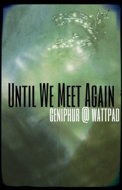 Until We Meet Again by geniphur
