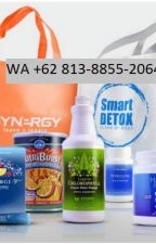 obat gondok alami smartdetox di jakarta WA/Call +62 813-8855-2064 by penyembuhangondok