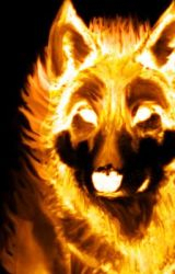 The Wolf on Fire by comeatmebro15