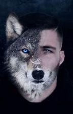 The alpha king mate by femker14