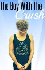 The Boy With The Crush [Lashton AU] by Larry_Lashton