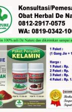 Obat Penyakit Kelamin Ampuh by obatgonoreawang