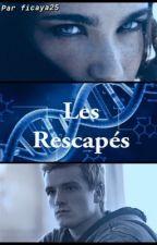 Les Rescapés by Ficaya25