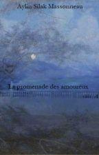La promenade des amoureux by Aylinlak