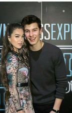 Meeting him [Shawn Mendes Fanfic] by realicticshawn