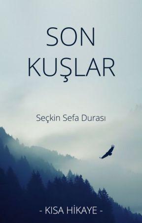Son Kuşlar by seckindurasi