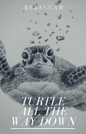 Turtles All the Way Down by jessicasimpson101