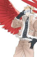 Birds of a feather (Hawks x fem!reader by Patutarata
