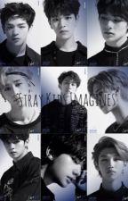 Stray Kids | Imagines |  by Simplelilkpopfan21