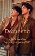 Domestic  by jungjoonyoung5555