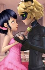 Princess Of France (An Adrienette/Marichat Fanfiction) by EtherealMagicQueen