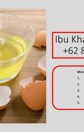 Wa 62 82219199897 Distributor Putih Telur Kiloan Untuk