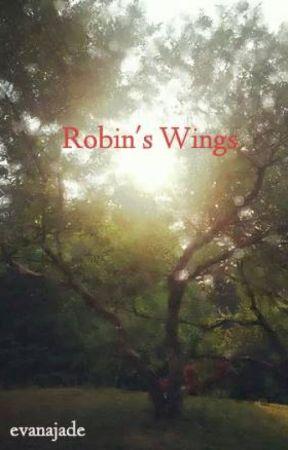 Robin's Wings by shEtheGypsy