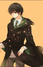 Harry Potter: The Slytherin Lord[No More Stopped Writing]  by animegirla33
